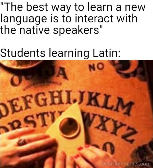 The Best Way To Learn A New Language