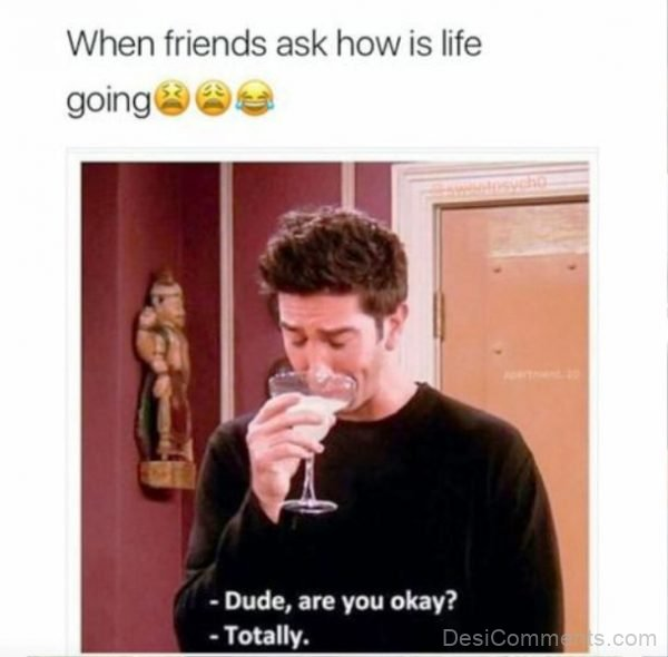 When Friends Ask How Is Life