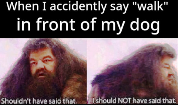 When I Accidently Say