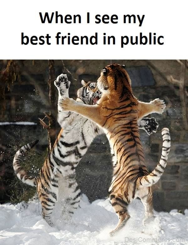 When I See My Best Friend