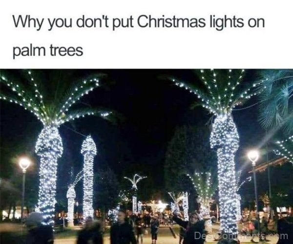 Why You Don't Put Christmas Lights
