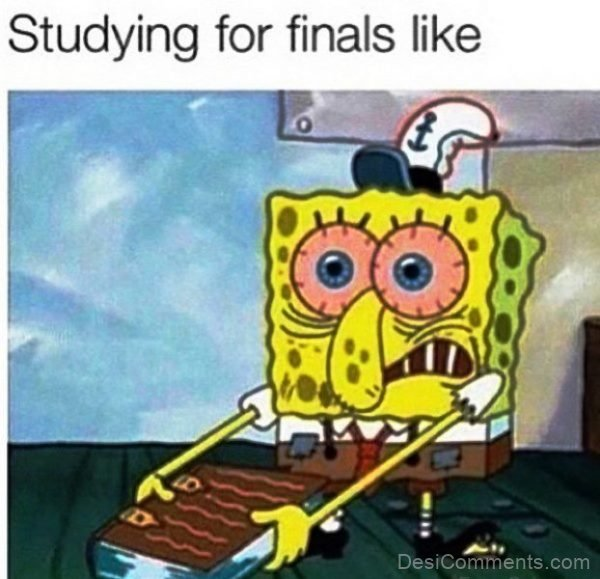 Studying For Finals Like
