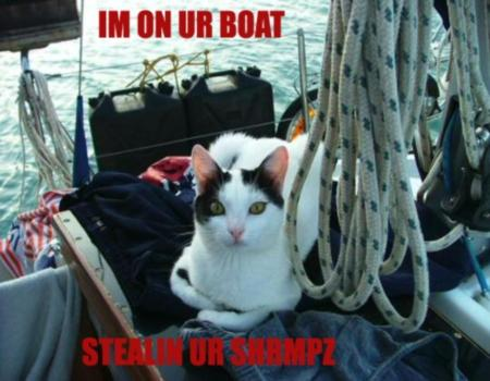 I Am On Your Boat