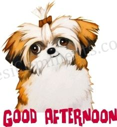 Cute Good Afternoon Graphic Desicommentscom