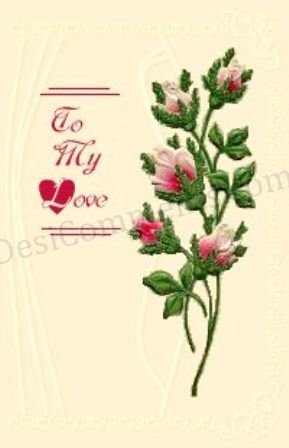 My Love Flowers Seeds Other Plants For At Lagos