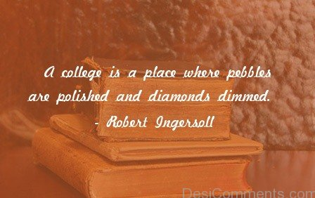 A Collage Is  A Place Where Pebbles Are Polished And Diamonds Dimmed