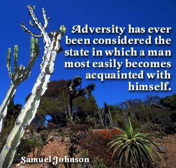 Adversity in Samuel johnson