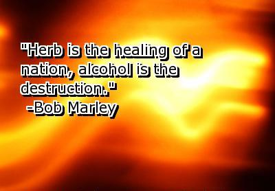 Alcohol Is The Destruction