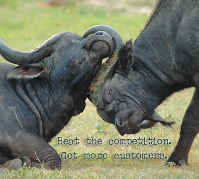 Beat The Competition Get More Customers