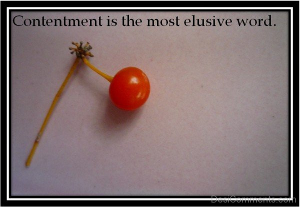Contentment Is The Most Elusive Word