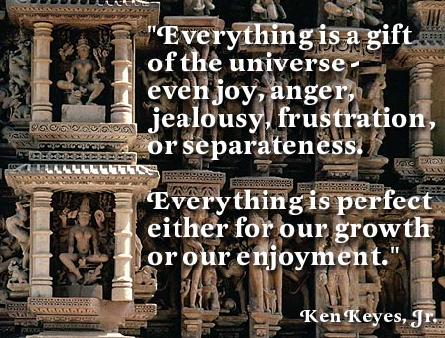 Everything Is A Gift Of The Universe Even Joy, Anger, Jealousy, Frustration, Or Separateness