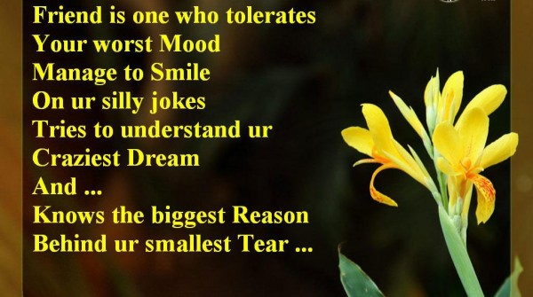 Friend is one who tolerates