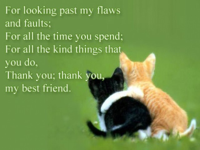 Best Friend Quotes, Sayings About True Friends