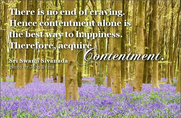 There Is No End Of Craving. Hence Contentment Alone Is The Best Way To Happiness