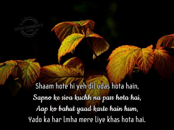 shaam-hote-hi-yeh-dil