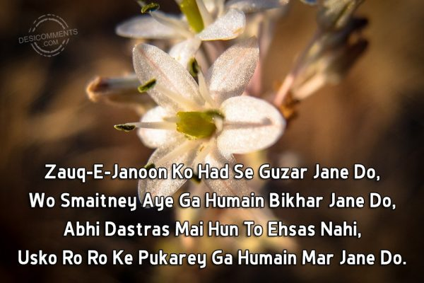 zauq-e-janoon-ko-had-se-guzar-jane-do