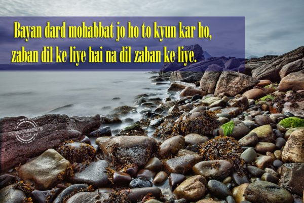 Picture: Bayan Dard Mohabbat Jo Ho To