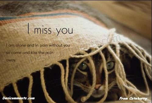Picture: I miss you lots
