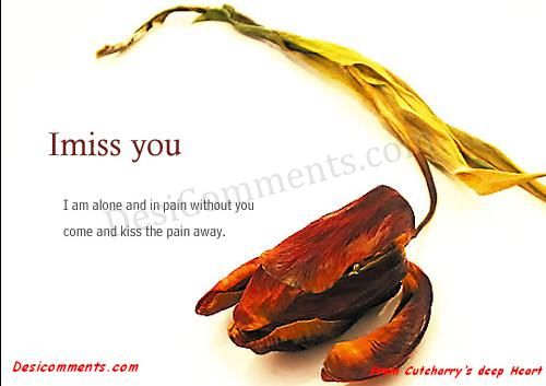 Picture: I miss you Honey