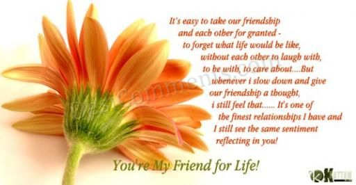 You are my friend for life