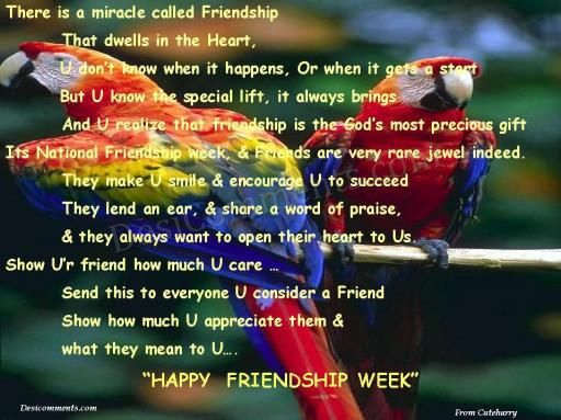 Happy Friendship Week
