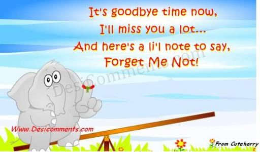Goodbye Time: Don't forget me