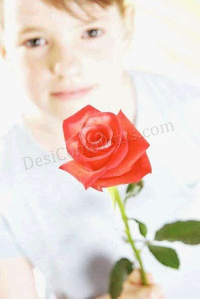 Picture: Rose for my love