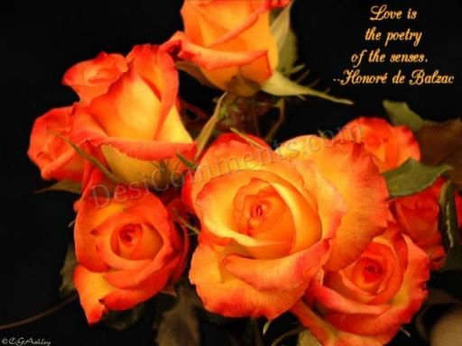 Picture: Love flowers