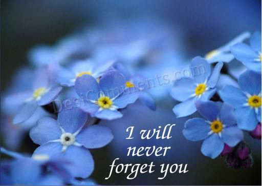 I will never forget you - DesiComments.com