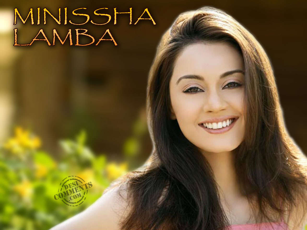 minissha lamba wallpapers | bollywood wallpapers