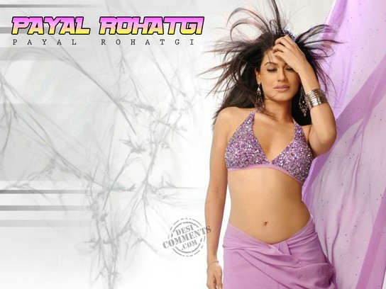 Payal  Sexy Look