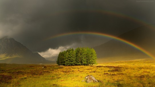 Beautiful Rainbow Image