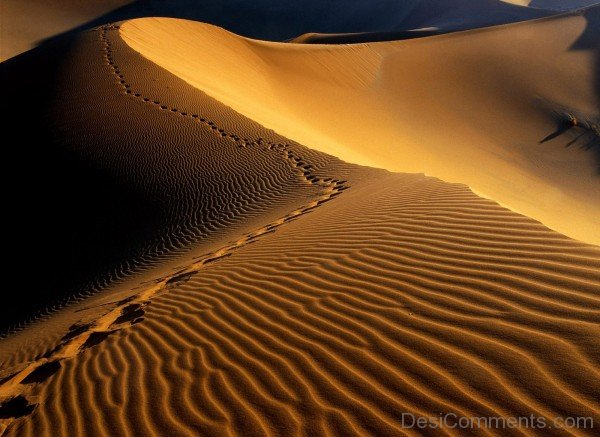 Namib Desert Hd Wallpaper-DC1224