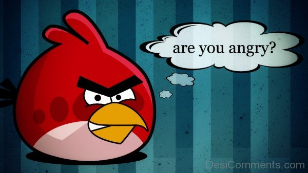 Angry Bird - Are You Angry-DC020