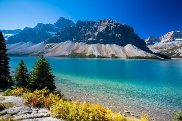 Bow lake albert canada