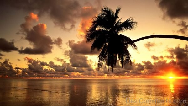 Hawaii Beach Wallpaper
