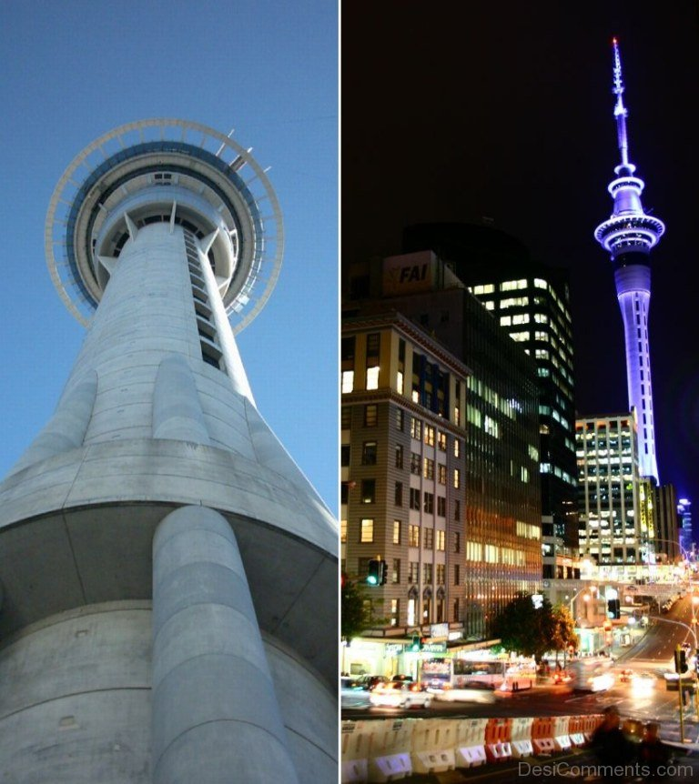 Sky Tower Auckland Cost