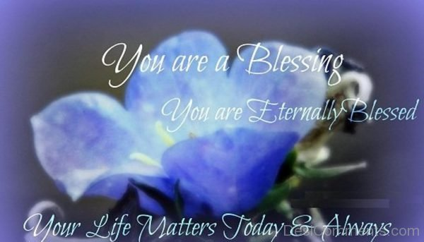 You Are A Blessing Quote-DC55