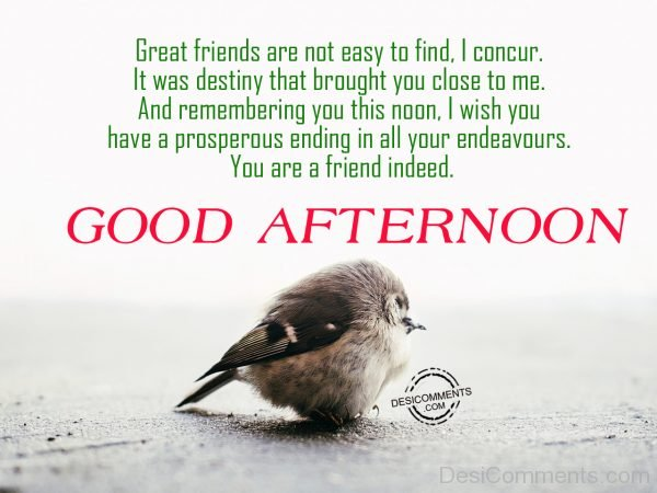 Good Afternoon - Great Friends