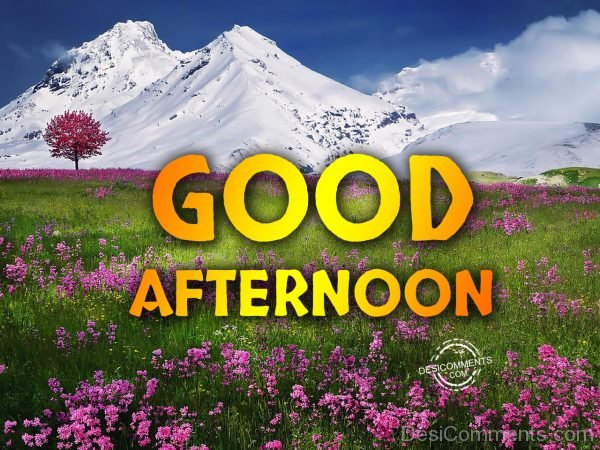 Good Afternoon - Have A Bless Day