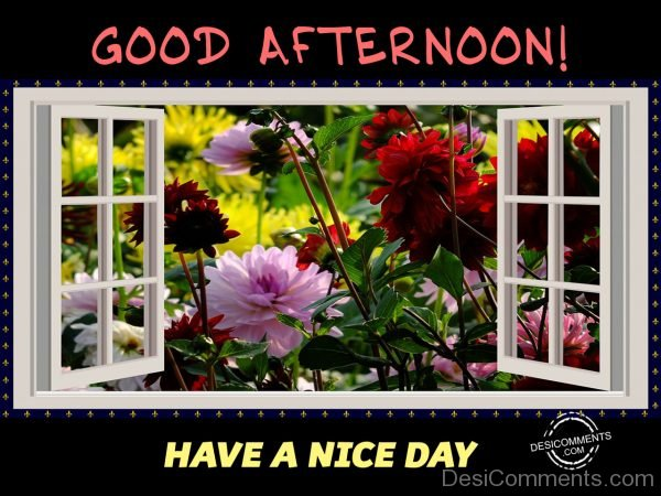 Good Afternoon - Have A Nice Day 01