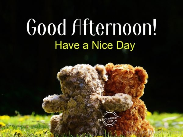 Good Afternoon - Have A Nice Day 0125