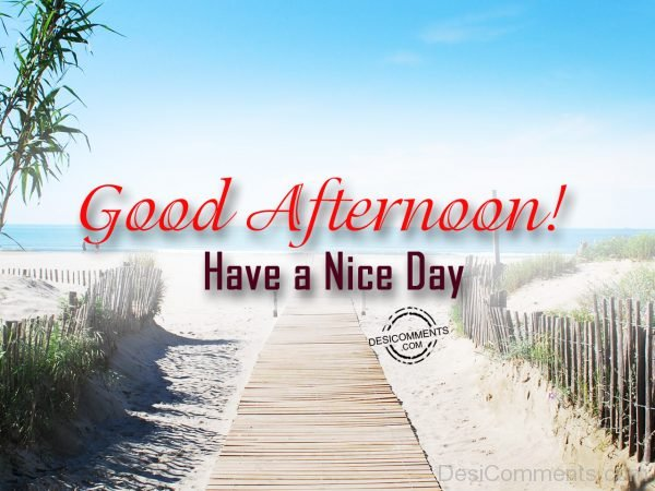 Good Afternoon - Have A Nice Day 45