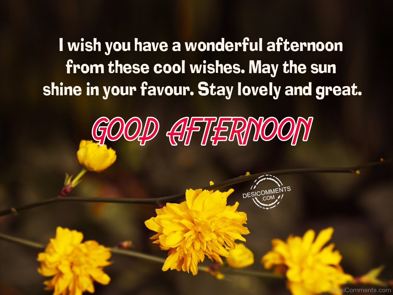 Good Afternoon Stay Lovely And Great Desicommentscom