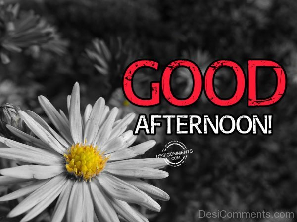 Have A Beautiful Day – Good Afternoon
