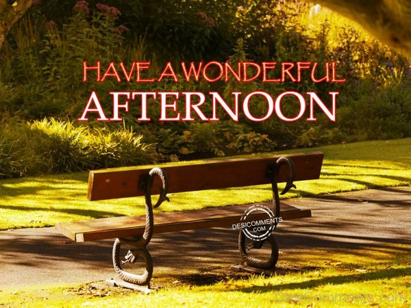 Have A Wonderful Afternoon 12
