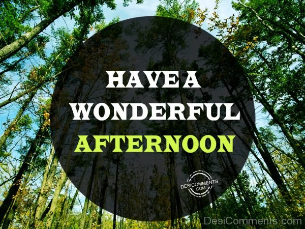 Have A Wonderful Afternoon 78