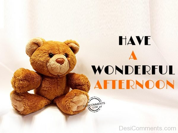 Have A Wonderful Afternoon – Pic