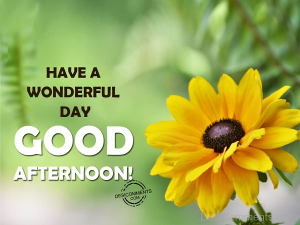 Have A Wonderful Day - Good Afternoon 012
