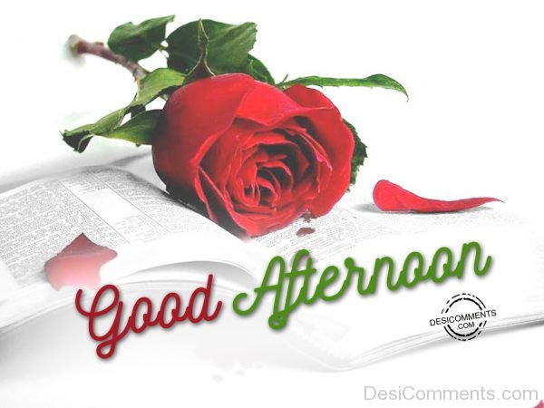 Picture Of Good Afternoon 00